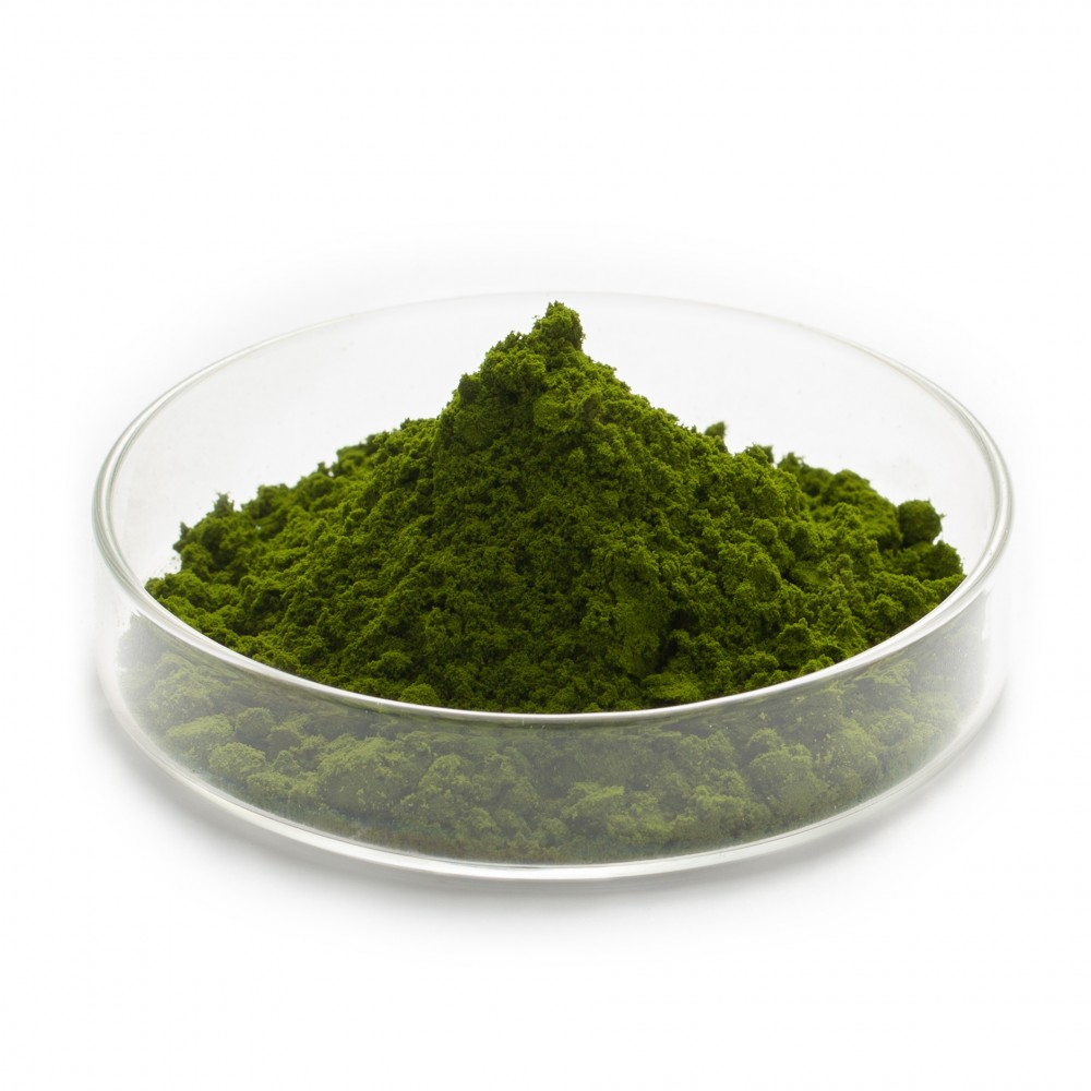 VerdeSea 全藻粉