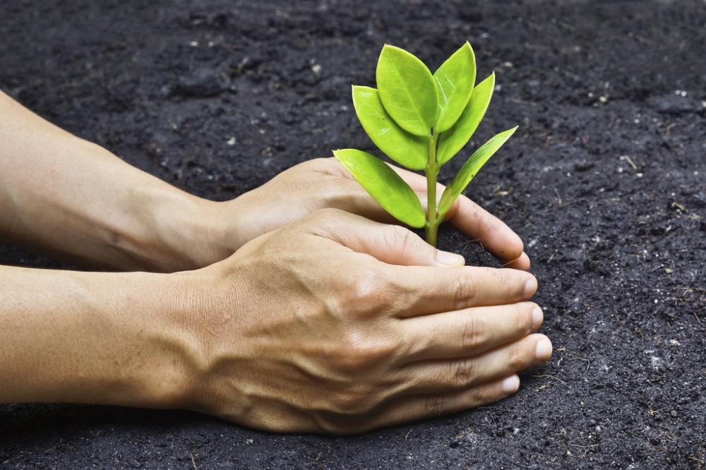 EHS环境健康安全审计、咨询和测试