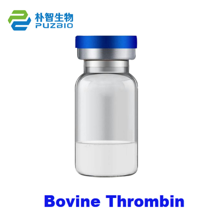 牛凝血酶Thrombin Bovine High Activity