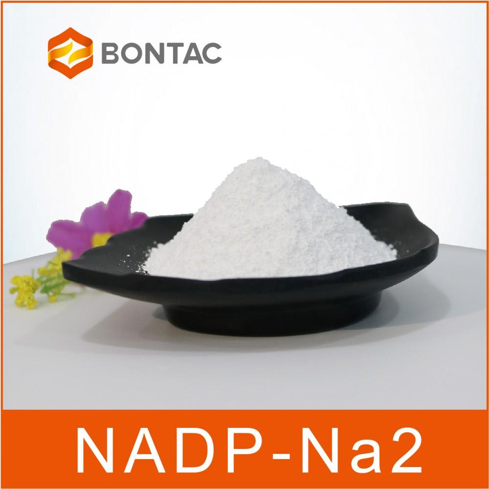 氧化型烟酰胺腺嘌呤二核苷酸磷酸