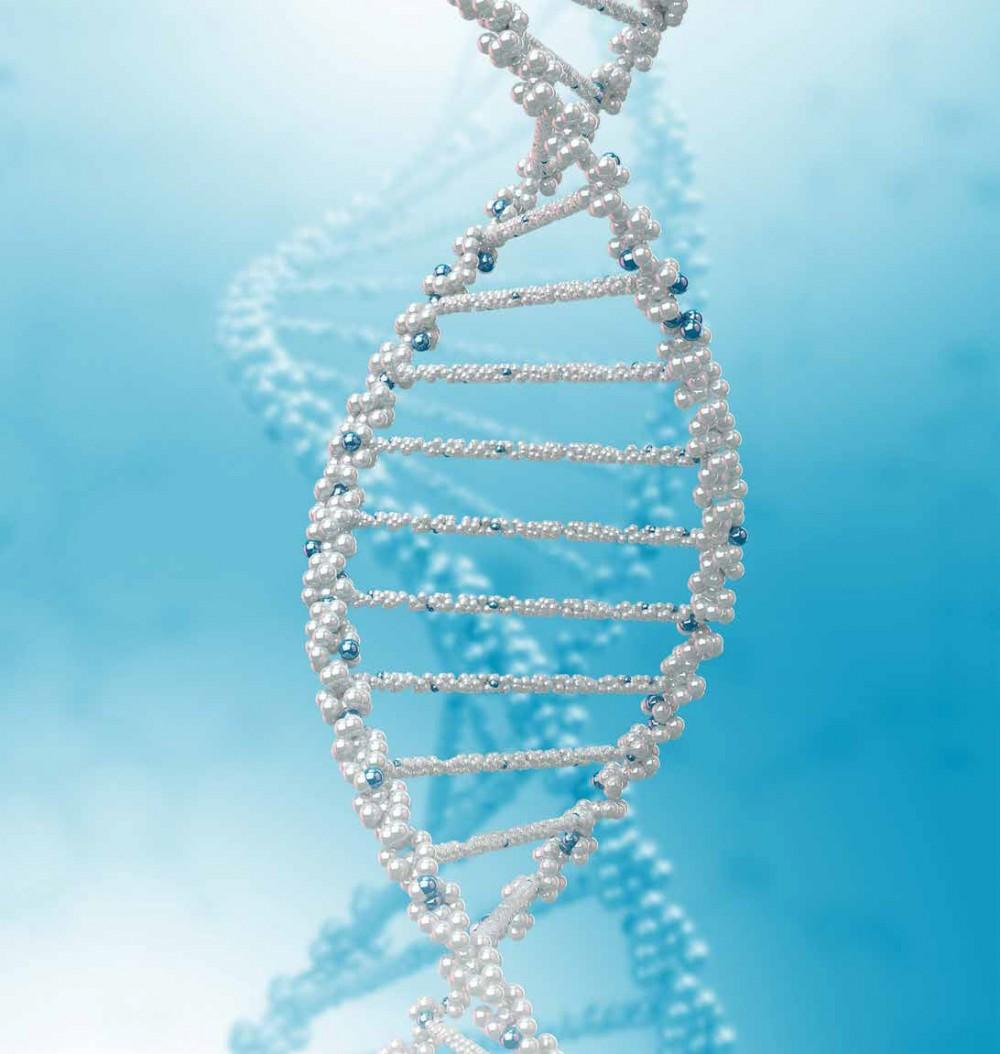 DNA测试