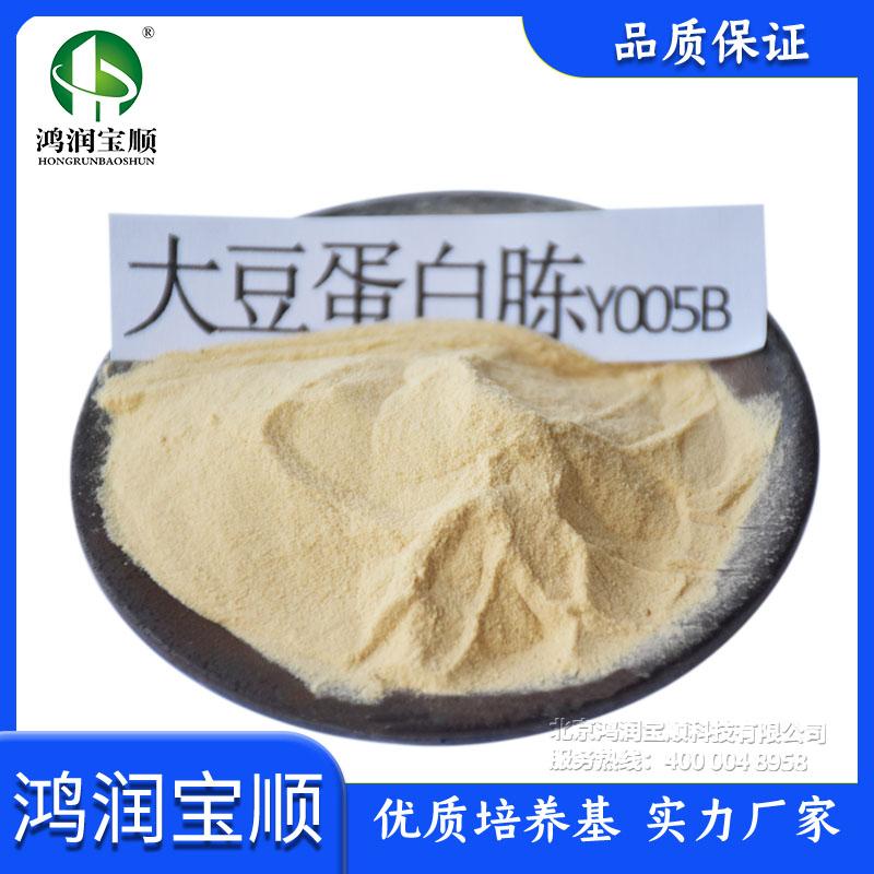 大豆蛋白胨Y005B