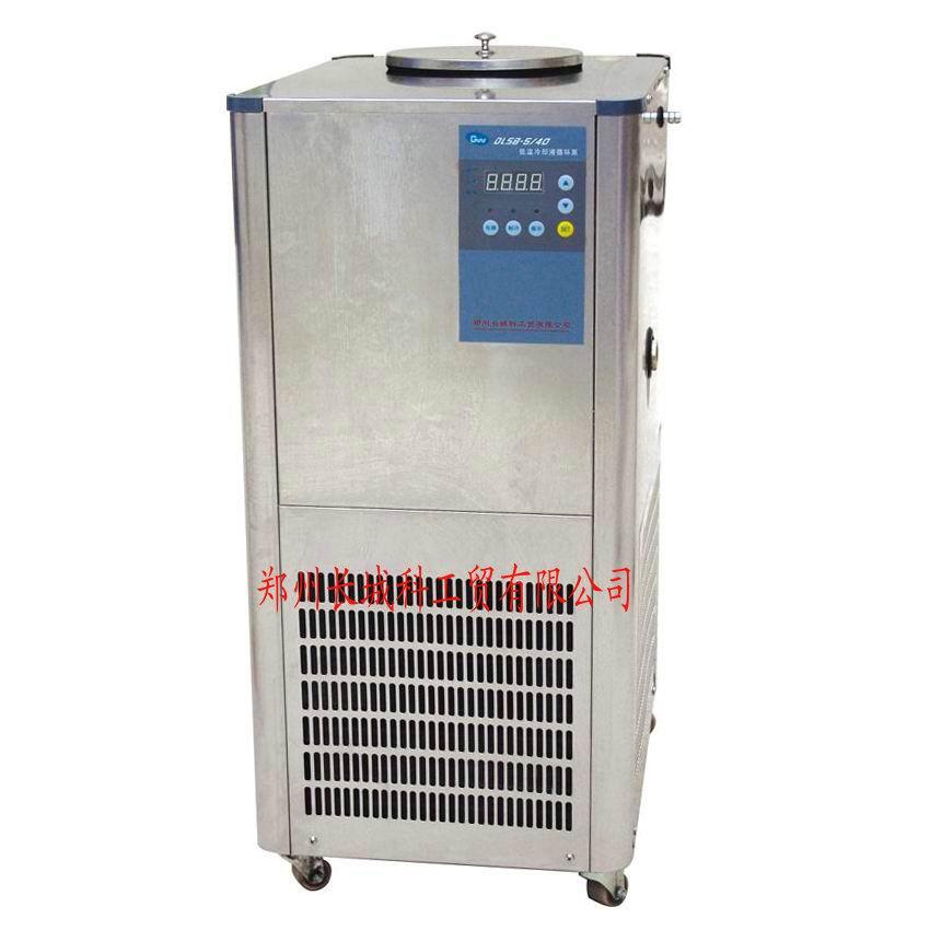 DLSB-5L/40℃(不锈钢)低温冷却液循环泵