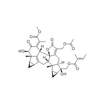 Chlorahololide D 植物提取物