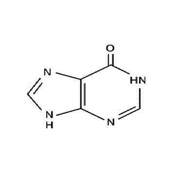 次黃嘌呤 核酸/蛋白合成