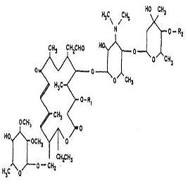酒石酸乙酰异戊酰泰乐菌素, 其他抗感染类