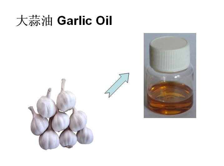 大蒜油产品图片