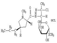 盐酸克林霉素