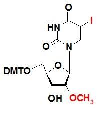 DMT保护性-5-碘-2´-甲氧基-尿苷 5-I-DMT-2´-OMe-U