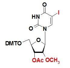DMT保护性-5-碘-2´-甲氧基-3´-乙酰基-尿苷 5-I-DMT-2'-OMe-3'-Ac-U