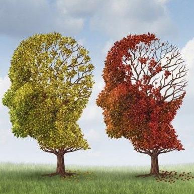 治疗阿尔兹海默症 多靶点化合物颇具前景
