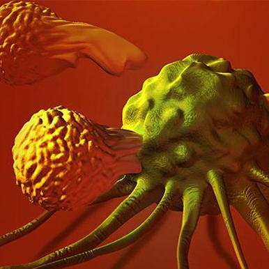 调节性T细胞表面LAP能否成为免疫治疗的下一站天后?