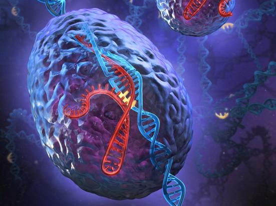 CRISPR-Gold