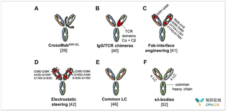 图3[双特异性抗体中轻链和重链的正确匹配技术。