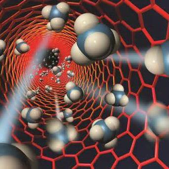 新型纳米载体技术使化疗药物副作用更小