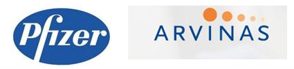 8.3亿美金:辉瑞与Arvinas牵手蛋白降解疗法