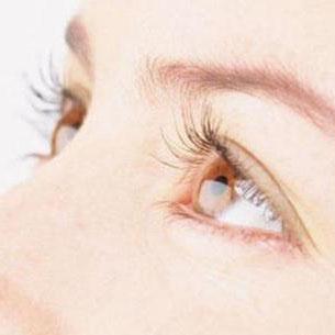 枸杞子多糖对糖尿病性视网膜病变的抑制作用
