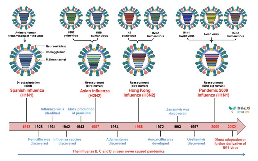 再遇流感季,甲型流感的历史与治疗知多少?