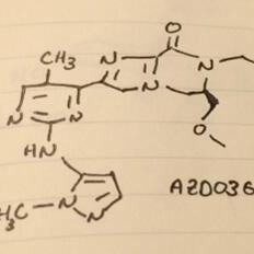 美国化学协会春季药物化学会议回顾:10家公司公布有望上市的11种小分子药物结构