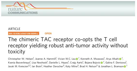 TAC-T细胞疗法多肿瘤模型效果优于CAR-T 未来临床效果可期