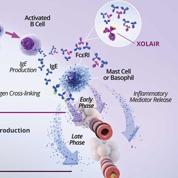 罗氏XOLAIR®持续扩大过敏适应症 获FDA食物过敏突破性疗法认定