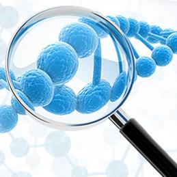 双重抑制剂MA242——治疗高侵袭性胰 腺 癌的新药