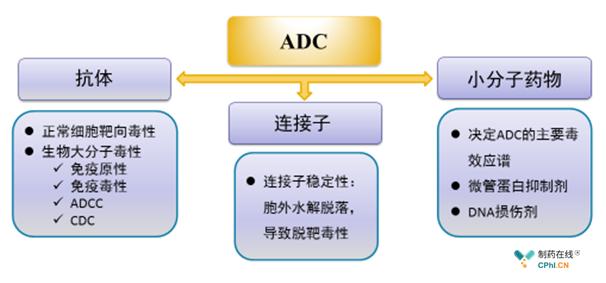 ADC药物安全性因素