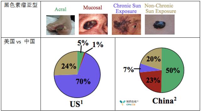 黑色素瘤患者中肢端黑色素瘤和黏膜黑色素瘤亚型