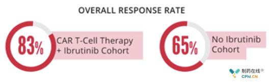 对照组与Ibrutinib组患者的应答率