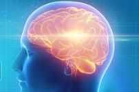 New Parkinson's disease drug target revealed through study of fatty acids