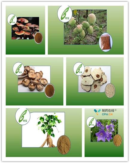 单方复方植物提取物