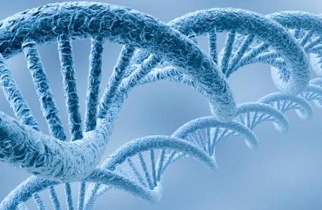 苏州瑞安生物科技有限公司