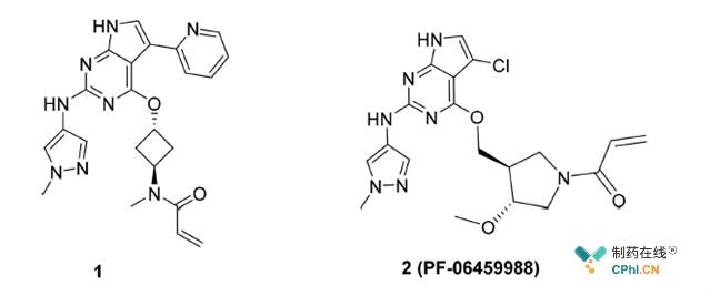 T790 M突变药物