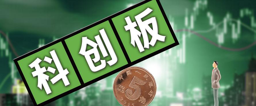 复旦张江首家公开申请科创板上市