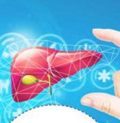 毒理学中肝肾的临床病理和病理关联变化