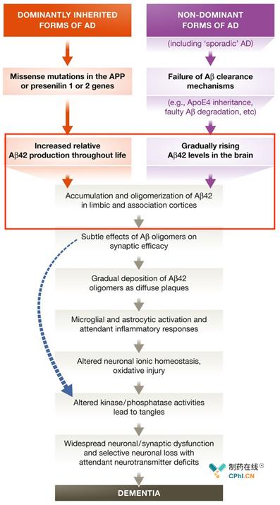 β-淀粉样蛋白假说