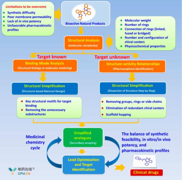 天然产物简化策略