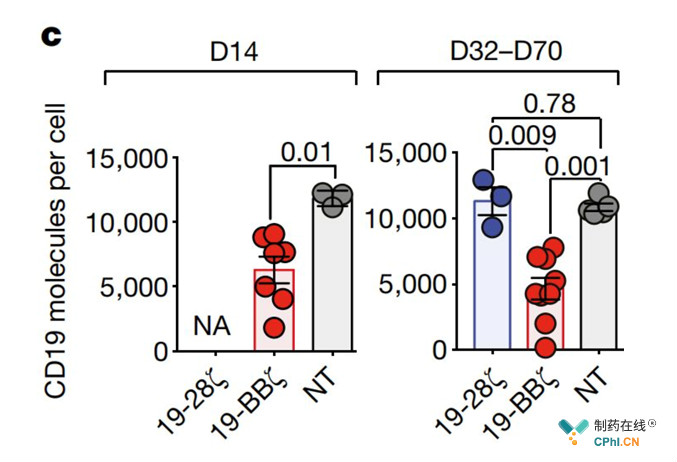 CD19抗原的变化