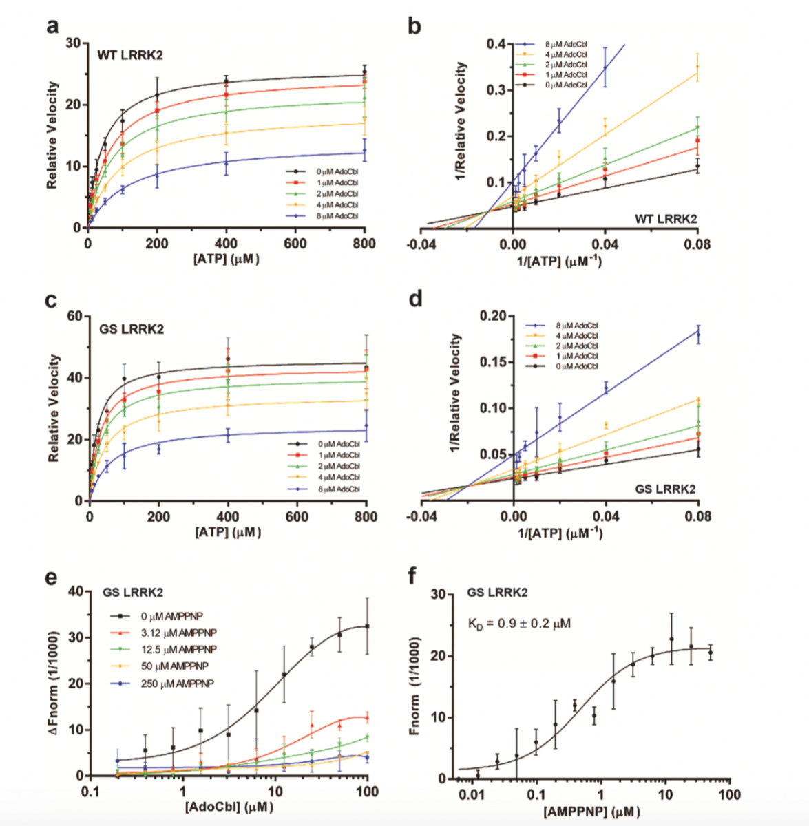 LRRK2 Protein Domain Structure Display and Pathogenic Site Distribution