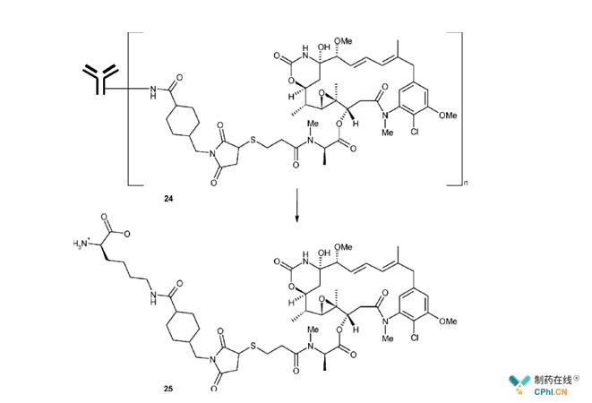 美登素的硫醚ADC及其释放