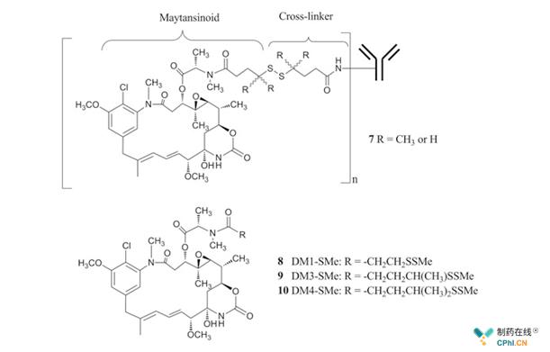 二硫键连接的美登素ADC