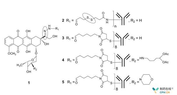 Doxorubicin的腙键衍生物
