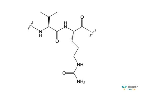 二肽连接物