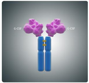 升白药物大盘点:恒瑞19K大降价,仍看好长效G-CSF的蓝海格局