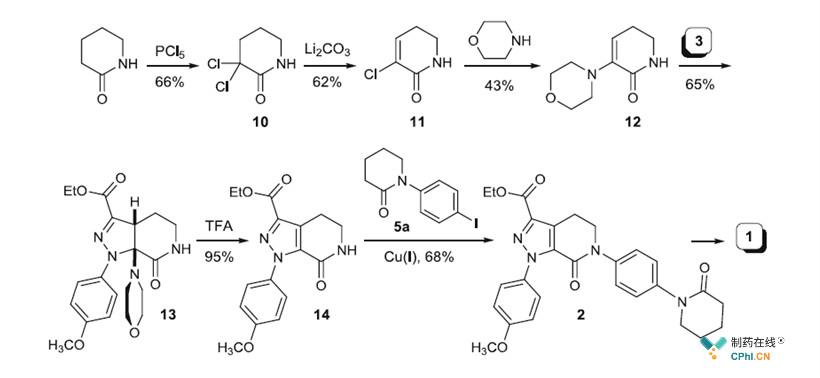 一代无己内酰胺形成Eliquis合成工艺