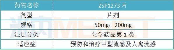 表1:ZSP1273 片的基本情况