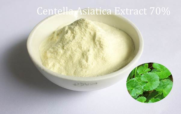 Centella Asiatica extract 70%