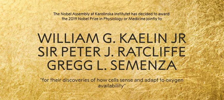 2019诺贝尔生理学或医学奖