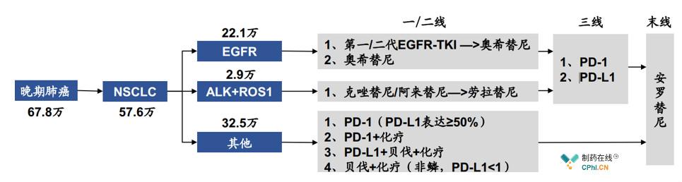 中国肺癌发病人数(估算)及IV期治疗方案