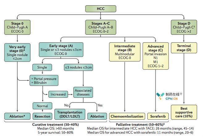 肝细胞癌一线
